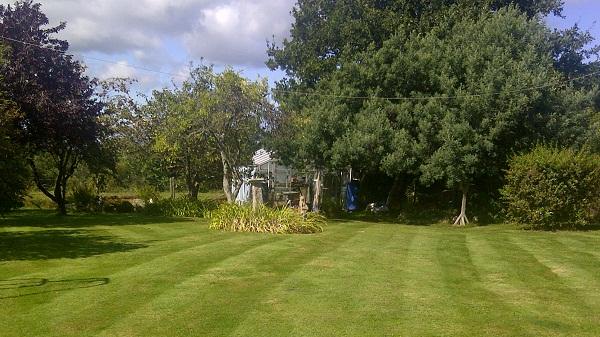 grass cutting isle of wight