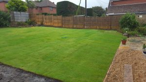 new turf laid