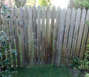 Isle of Wight Fencing