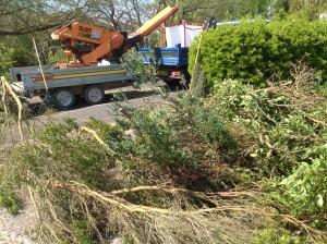 Isle of wight green waste biomass shredder