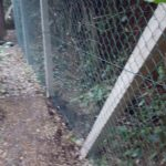 chain link fencing isle of wight