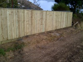 Fencing Isle of Wight